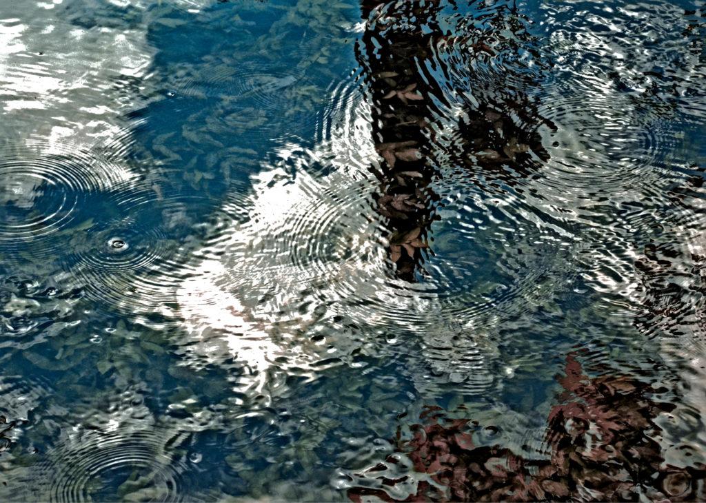 Nina Aragon Créatrice images Photos Art